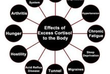 Adrenal Fatigue Symptoms, Treatment and Recovery ...the WHOLESTIC Method / A board to help educate others how to prevent, treat and heal adrenal fatigue.    I had stage three adrenal fatigue and found my own way to heal through education and experience.  www.fitnessforwardstudio.com