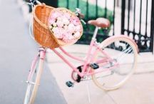 New Bike?