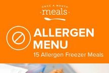 Allergen Nut Free February Freezer Menu / Add some variety to your current kitchen repertoire with this Nut Free menu of wintry comfort foods. From rich lemon basil ricotta pasta to PB & J inspired breakfast cookies these freezer friendly recipes will bring a little warmth to any mealtime. / by Once A Month Meals
