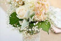 WEDDING / by Nadine E.