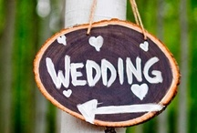 Wedding Ideas  / for when my girls find that special someone...and he passes the momma test  / by Deborah Ballard