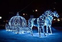 Christmas Lights / Love to look at Christmas lights / by Deborah Ballard