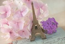 French Inspiration  / by Deanna Noble