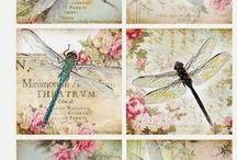 Art - Dragonflies / by Peggy Bousman