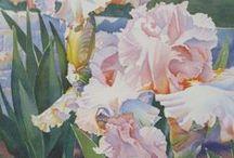 Art - Iris / by Peggy Bousman