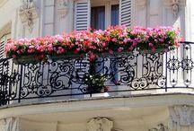 BALCONY / #balcony #balconies #frenchbalcony #home #homedecoration #balconydecoration #balkon #balkonkeyfi