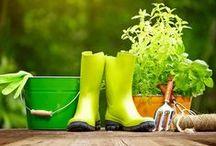 Jardinage & décoration / Les beaux mois de l'année sont devant nous: créez un jardin détente, d'ambiance, ludique, un verger, un potager à petits prix avec cora ! Découvrez également nos bricolages faciles à réaliser chez soi. Vivement le printemps ! #printemps #fleurs #jardin #Liège #corarocourt #cora #décoration #DIY #bricolage