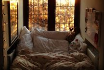 dream room  / by cara scammon