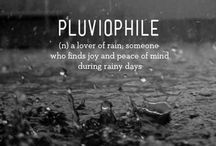 Pluviophile / Rainy daydreams / by Wendy Allan