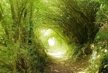 Green tunnels