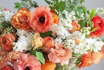 FLOWER LOVE ✯ / I love flowers of all kinds!  flowers ✯ bouquets ✯ floral design ✯ gardens ✯ color
