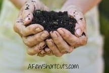 Gardening Short Cuts / Great tips for Organic and backyard gardening / by AFewShortCuts.com