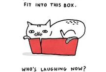 Cats-n-Boxes and other things to BE in :) / by Victoria Susan Leigh