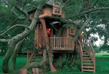 Tree Houses / Tree Houses / by Jessica Bryant