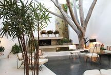 Outdoor Living Spaces / All about plants, landscaping, outdoor living, alfresco design ideas