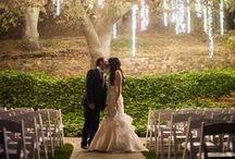 Weddings - now to plan!