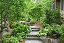 The Backyard... / Garden, Patio, Fire pits, Backyard Oasis...  / by NewTexian Brewery