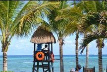 Sandos Caracol / If you love nature, animals and the turquoise waters of the Mexican Caribbean, this is the perfect paradise for you!  http://www.sandos.com