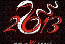 Year of the Snake / 2013 Chinese New Year celebrated across America