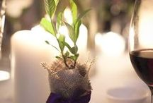 Eco Wedding Ideas / We love our environment! That's why we look for ways to make the most important day in your life environmentally friendly!