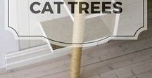 Cat Trees / Cat trees for our furry loved ones