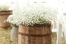 Wedding Ideas / by Reilly Braddock