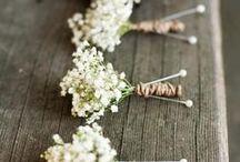 Rybak Wedding  / May 31, 2015 / by Caitlin Britton