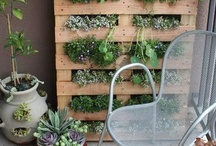 Verticaal tuinieren - vertical garden / Vergroot je tuinoppervlak: verticaal tuinieren - Expand your gardensurface: vertical gardening  / by Tuinen.nl