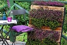 DIY tuinieren met pallets - DIY pallet gardening tips / Op dit bord hebben wij tips verzameld voor het recyclen en upcyclen van pallets. Laat je verbazen door de verschillende toepassingen van recycle en upcycle.
