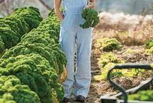 Farm Wear