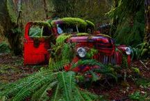Cars*Final Resting Places / Transportation grave yards / by Cathy Kent