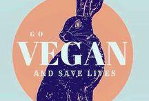 Vegan Curiosities