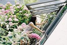 dream home / by Liz Davis