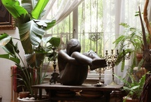 Decor / by Sherry Petryshyn