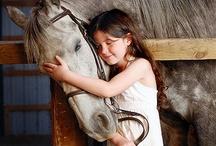 Horse Horse Horse / Horse / by Sonoe Kinoshita