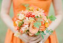 ::Orange Wedding::
