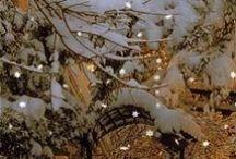 Winter <3 / by Deidre Dreams