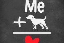 Be Vet for animals