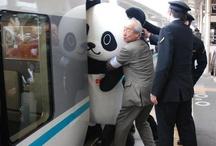 Japan Mon Amour