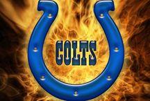 Colts!