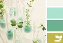 favorite colors / by DramaqueenSeams