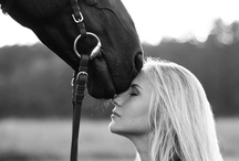 Equine Romance / I will always be an equestrian! / by K. Shardell Monique B.