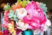 Blooms / by DramaqueenSeams