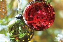 Christmas / by Elizabeth Hill Delvecchio