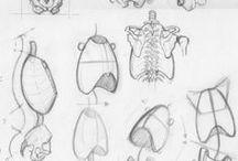 D R A W I N G  P E O P L E / stuff on drawing people