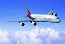 Asiana's Wings / Fly Asiana!  / by Asiana Airlines