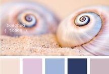 colour palette / by Sandy Lumsden