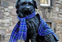 Scotland / by Sandy Lumsden