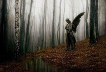 Angels are all around us / by Renee DiLorenzo