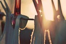 Sunshine Dryer! / by Renee DiLorenzo